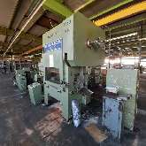 Automatic stamping machine - Double column HAULICK + ROOS RVD 125-1180 photo on Industry-Pilot